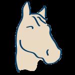 Horse Formulations